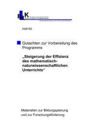 Steigerung der Effizienz des mathematisch- naturwissenschaftlichen