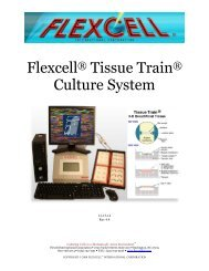 Flexcell Tissue Train Culture System