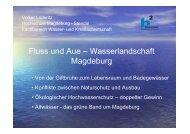Fluss und Aue – Wasserlandschaft Magdeburg - Hochschule ...