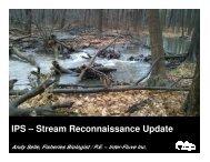 IPS – Stream Reconnaissance Update