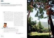 A l'assaut des arbres - Parco Avventura