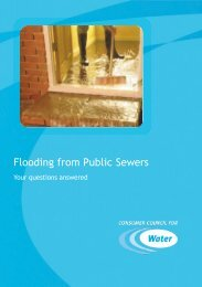 Flooding from Public Sewers