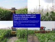 Trials to control Western Corn Rootworn (Diabrotica ... - Land-Impulse