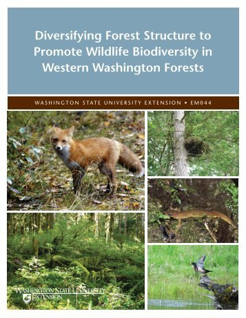 Diversifying Forest Structure to Promote Wildlife Biodiversity in ...