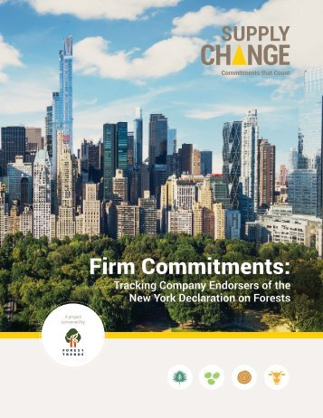 Firm Commitments
