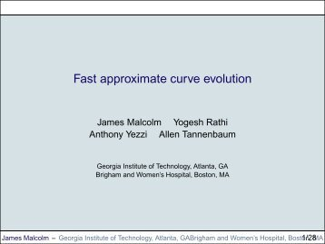 Fast approximate curve evolution