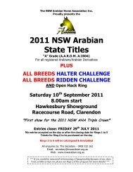2011 NSW Arabian State Titles