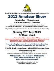 2013 Amateur Show
