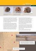 horizon - Page 5