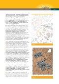 horizon - Page 3