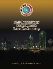 Safety Summit Executive Summary
