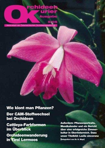 CAM (Crassula Acid Metabolism) Pflanzen