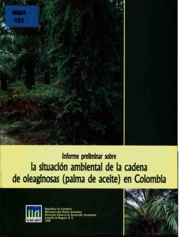 (palma de aceite) en Colombia