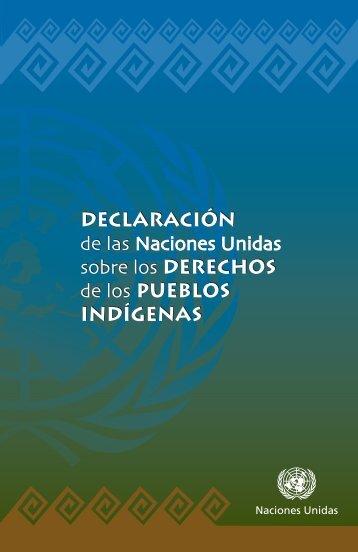de las Naciones Unidas sobre los derechos de los pueblos indígenas