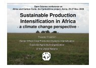 Sustainable Production Intensification in Africa