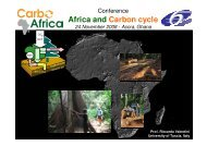 Africa and Carbon cycle