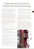 Wildlife - Page 5