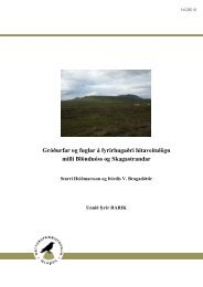 NI-08010 - Náttúrufræðistofnun Íslands