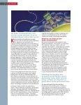 Die Zukunft der Cyber-Kriminalität - Seite 4