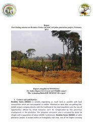 Report Fact finding mission on Herakles Farms ... - cameroonveritas