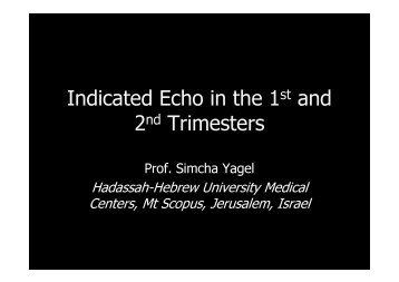 Indicated Echo in the 1 and 2 Trimesters
