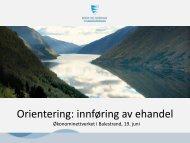Orientering innføring av ehandel