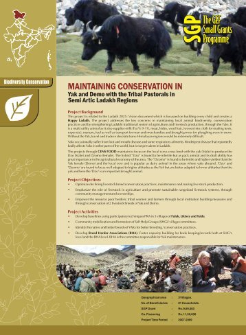 MAINTAINING CONSERVATION IN