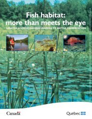 Fish habitat more than meets the eye