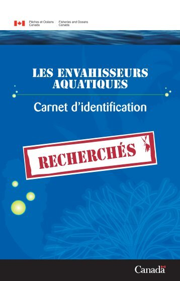 Carnet d'identification