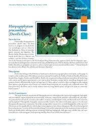 Harpagophytum procumbens - Alternative Medicine Review