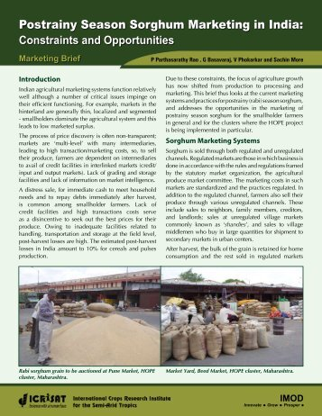 Postrainy Season Sorghum Marketing in India