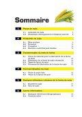 maïs - Page 3