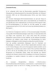 Zusammenfassung - Ruhr-Universität Bochum
