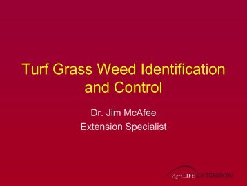 Turf Grass Weed Identification and Control