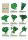 Asian Vegetables - Page 2