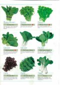 Asian Vegetables - Page 4