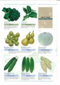 Asian Vegetables - Page 5