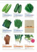 Asian Vegetables - Page 6