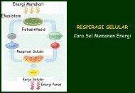 RESPIRASI SELULAR Cara Sel Memanen Energi