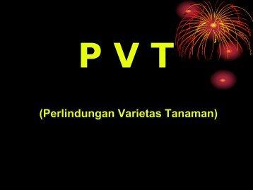 P V T