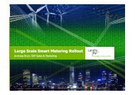 Large Scale Smart Metering Rollout
