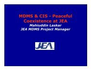 MDMS & CIS - Peaceful Coexistence at JEA