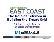 The Role of Telecom in Building the Smart Grid