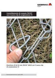 Giunzione di teli di rete TECCO® con il nuovo clip di ... - Geobrugg AG
