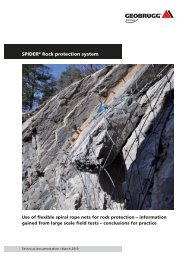 SPIDER® Rock protection system - Geobrugg AG