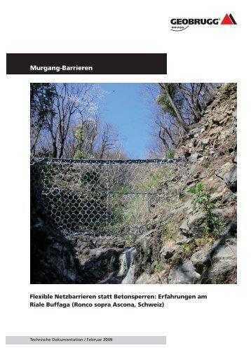 Erfahrungen am Riale Buffaga - Geobrugg AG