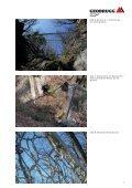 Erfahrungen am Riale Buffaga - Geobrugg AG - Seite 7