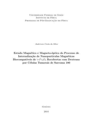 Estudo Magnético e Magneto-óptico do Processo de ... - UFG