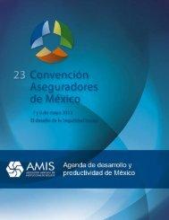 Agenda de desarrollo y productividad de México - Amis