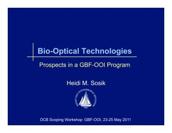 Bio-Optical Technologies